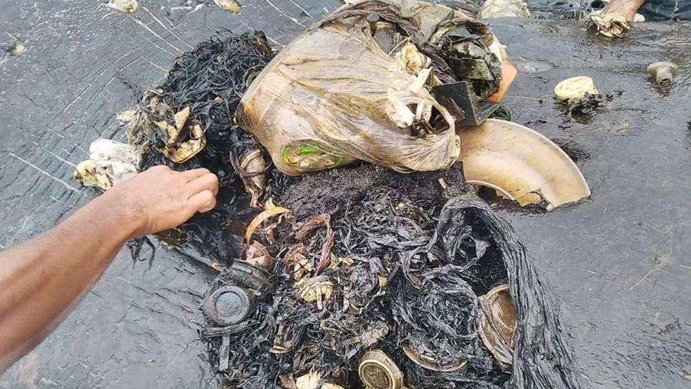 Foto: En el interior del estómago han encontrado 15 vasos de plástico, 25 bolsas y hasta dos chanclas. (Reuters)