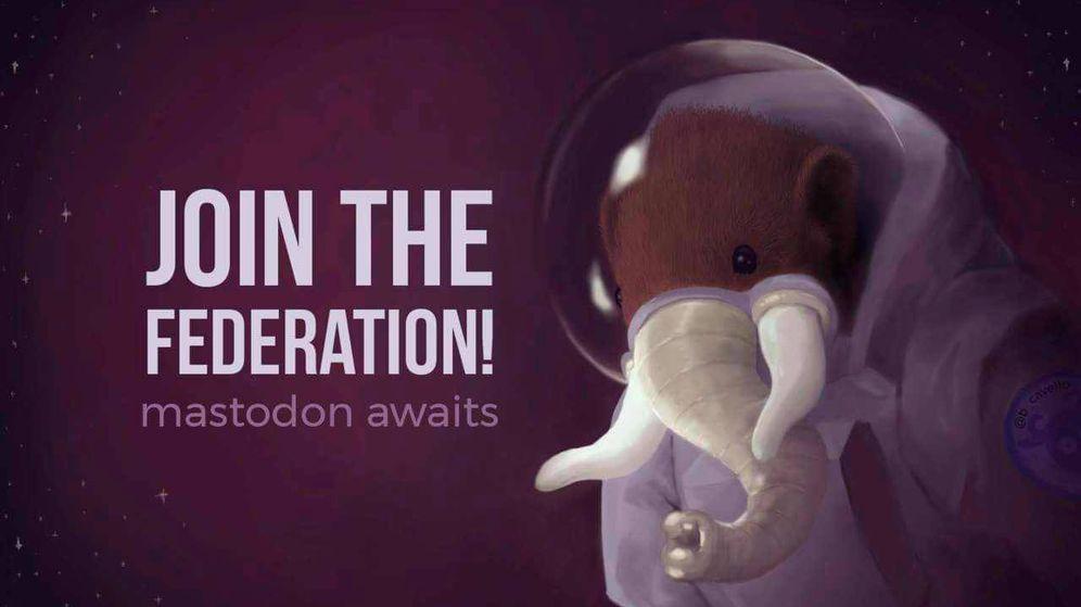 Foto: Foto: mastodon.social.