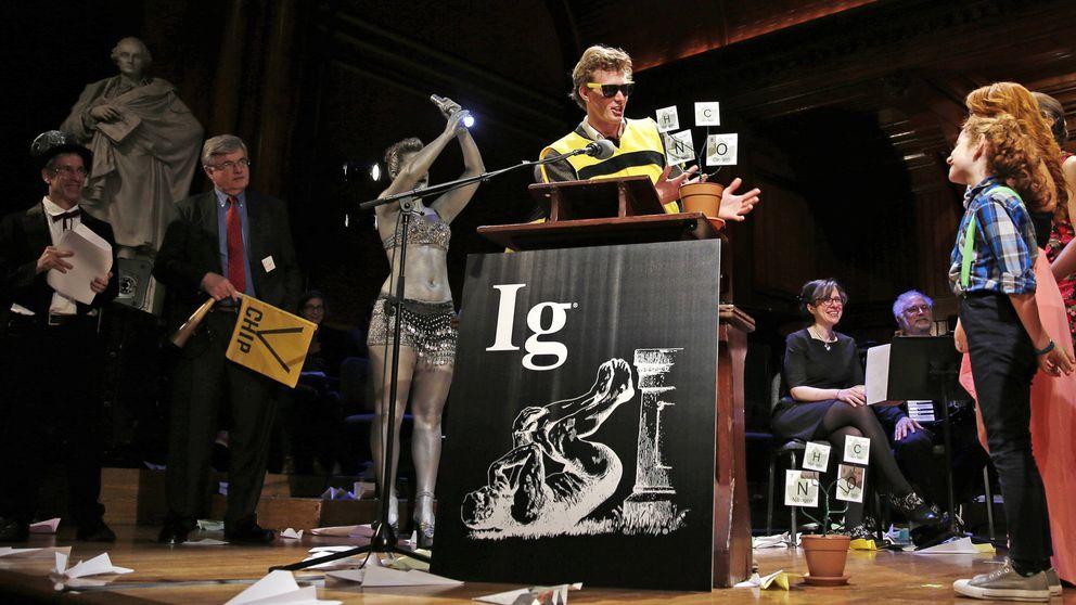 Pelusas en el ombligo y viagra para hámsters: llegan los premios IgNobel
