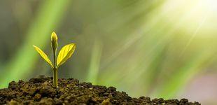 Post de Inversiones 'verdes'