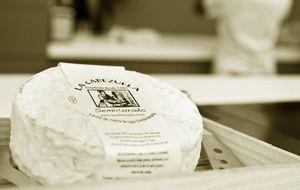 El queso de cabra hecho pasión