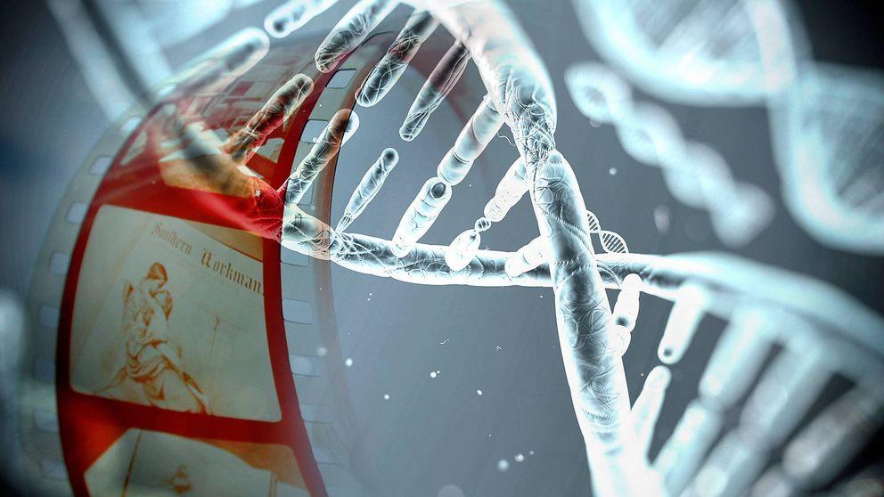 Logran almacenar fotos y vídeos digitales dentro del ADN de una bacteria
