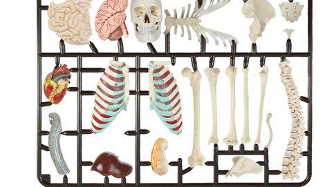 El lado más oscuro de la sanidad: conflictos de intereses, 'papers' para vender implantes...
