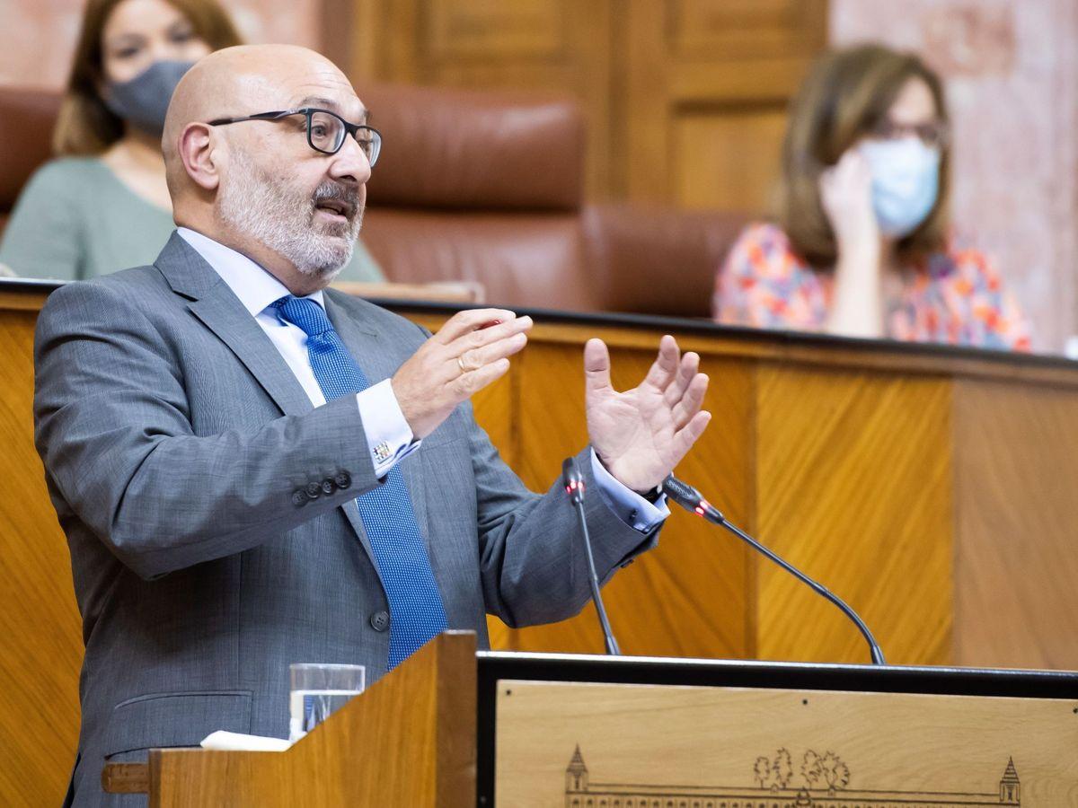 Foto: El portavoz parlamentario andaluz de Vox Alejandro Hernández. (EFE)