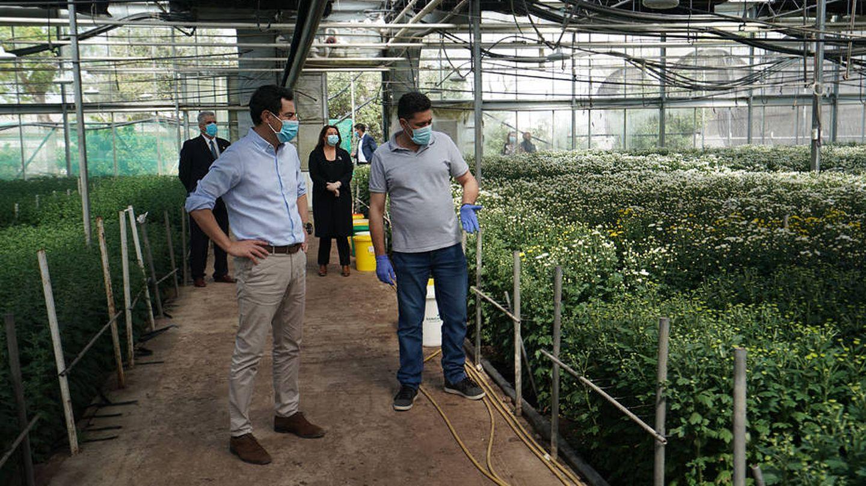 El presidente de la Junta visita una producción de flor cortada.