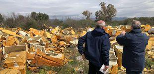 Post de Los vertederos ilegales de Roma que nadie sabe cómo erradicar