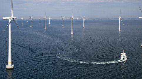 Impacto ambiental eólico: como evitarlo en su despliegue 'offshore'
