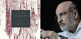 Post de Fernando Aramburu rinde homenaje a la poesía con su libro 'Vetas profundas'