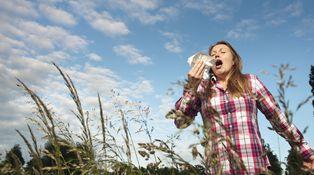 ¿Crees que tienes alergia? Cómo aliviar los síntomas o descubrir si es solo un resfriado