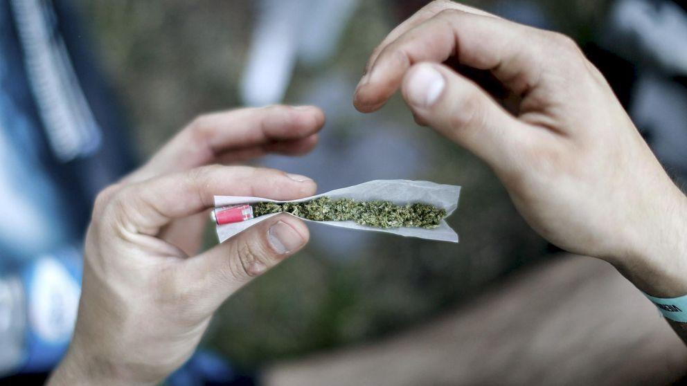 El Gobierno vasco da el primer paso hacia la regularización del cannabis en Euskadi
