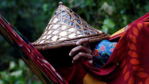 El éxodo de los rohingya