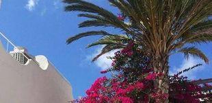 Post de Agua Amarga, la excusa perfecta para viajar a Cabo de Gata (aunque sea invierno)