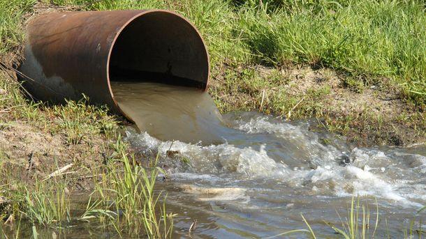 Foto: Un 'software' español rastrea el origen de la contaminación fecal en el agua