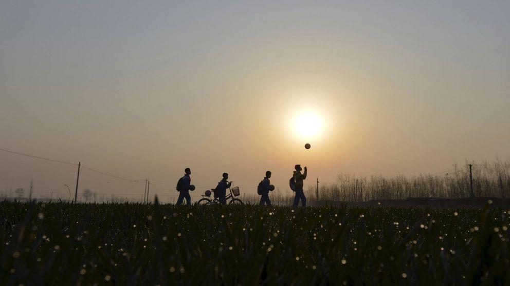 """""""Papá, tengo miedo"""": un equipo benjamín deja de jugar por culpa de la violencia"""