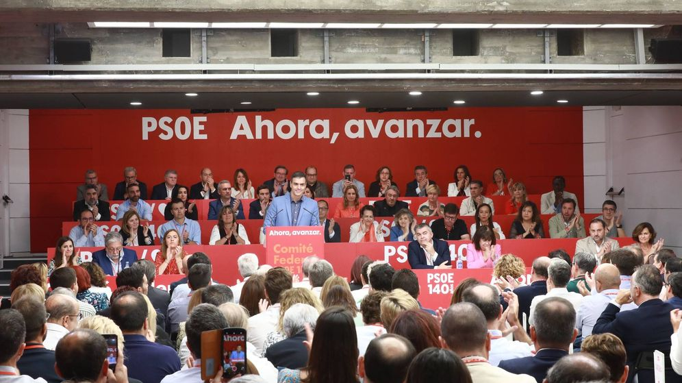 Foto: Pedro Sánchez, durante su intervención en el comité federal del PSOE. (EFE)