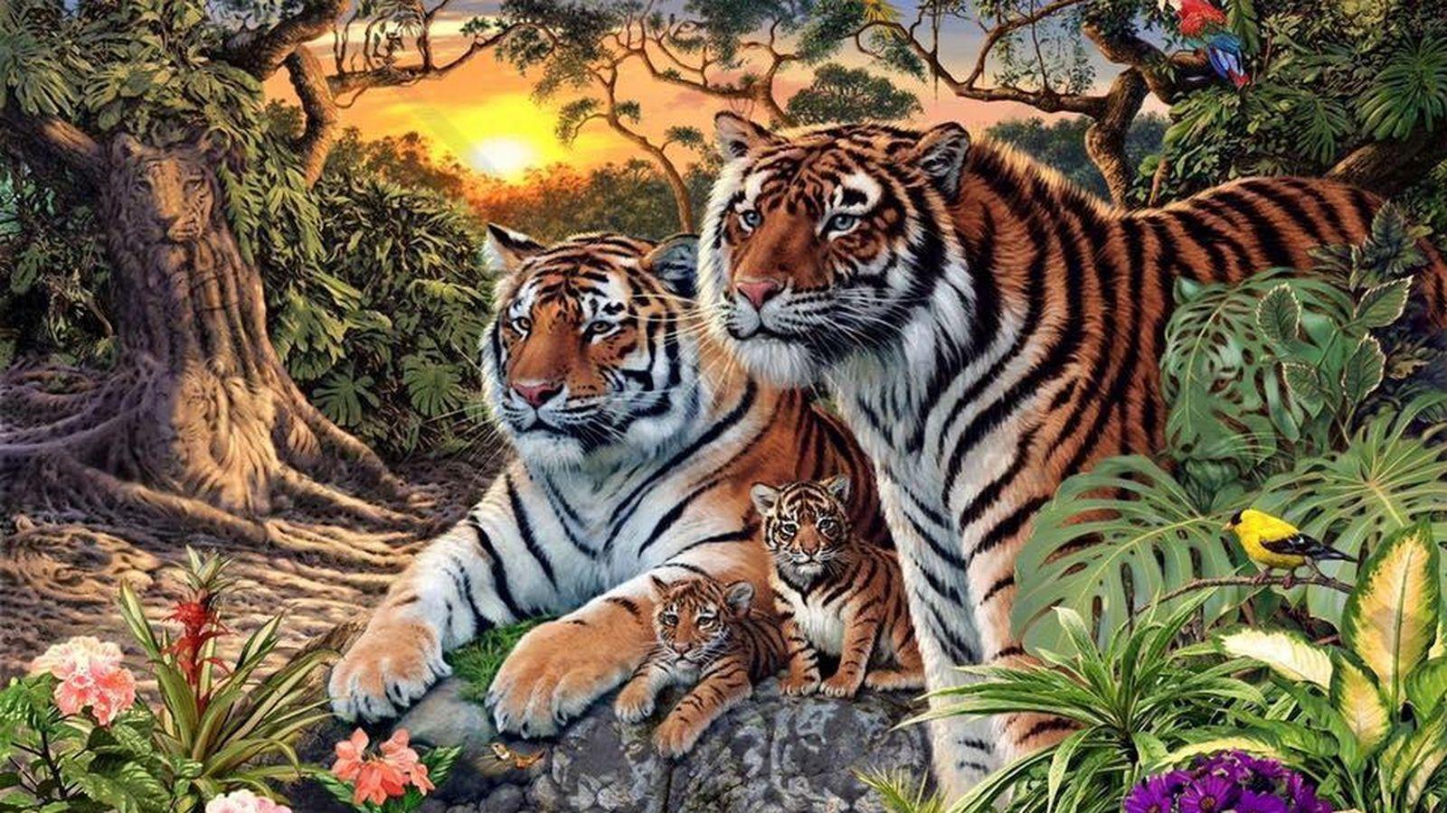 Juegos Cuántos Tigres Ve En La Imagen Juegue A Localizar Los