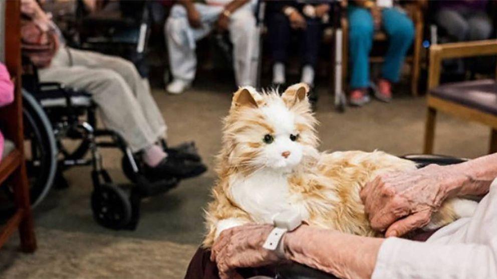 Mascotas robóticas en Florida para acompañar a los ancianos