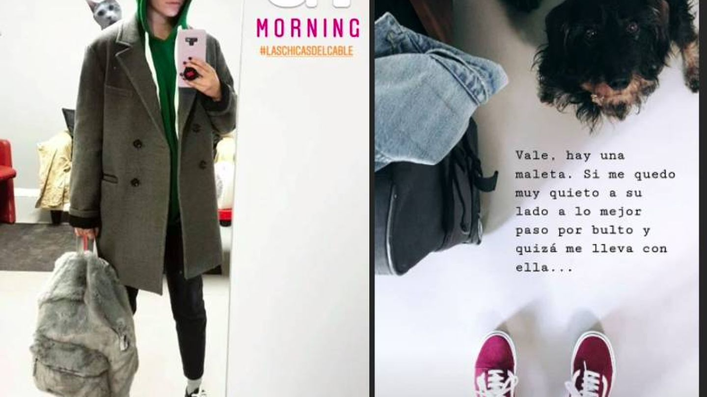 Este modelo de Vans es uno de los imprescindibles de Blanca Suárez. (Instagram)