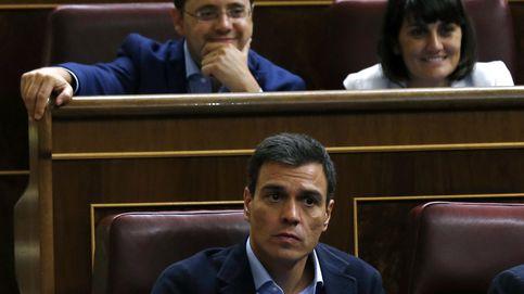 El PP rechaza una comisión de investigación en el Congreso sobre la tesis de Sánchez