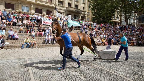 Euskadi aplica al arrastre de piedras con buey el mismo criterio antidopaje que en la hípica