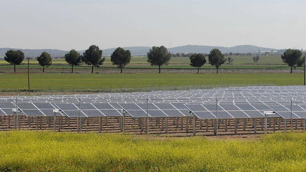 Foto:  Imagen de un campo de placas solares en la provincia de Ciudad Real. (EFE)