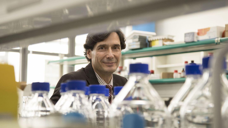 El científico Manuel Serrano, en su laboratorio. (EFE - Marta Pérez)
