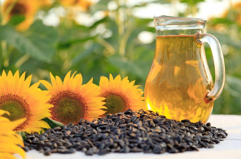 Foto: La planta de las semillas de girasol y su aceite. (iStock)