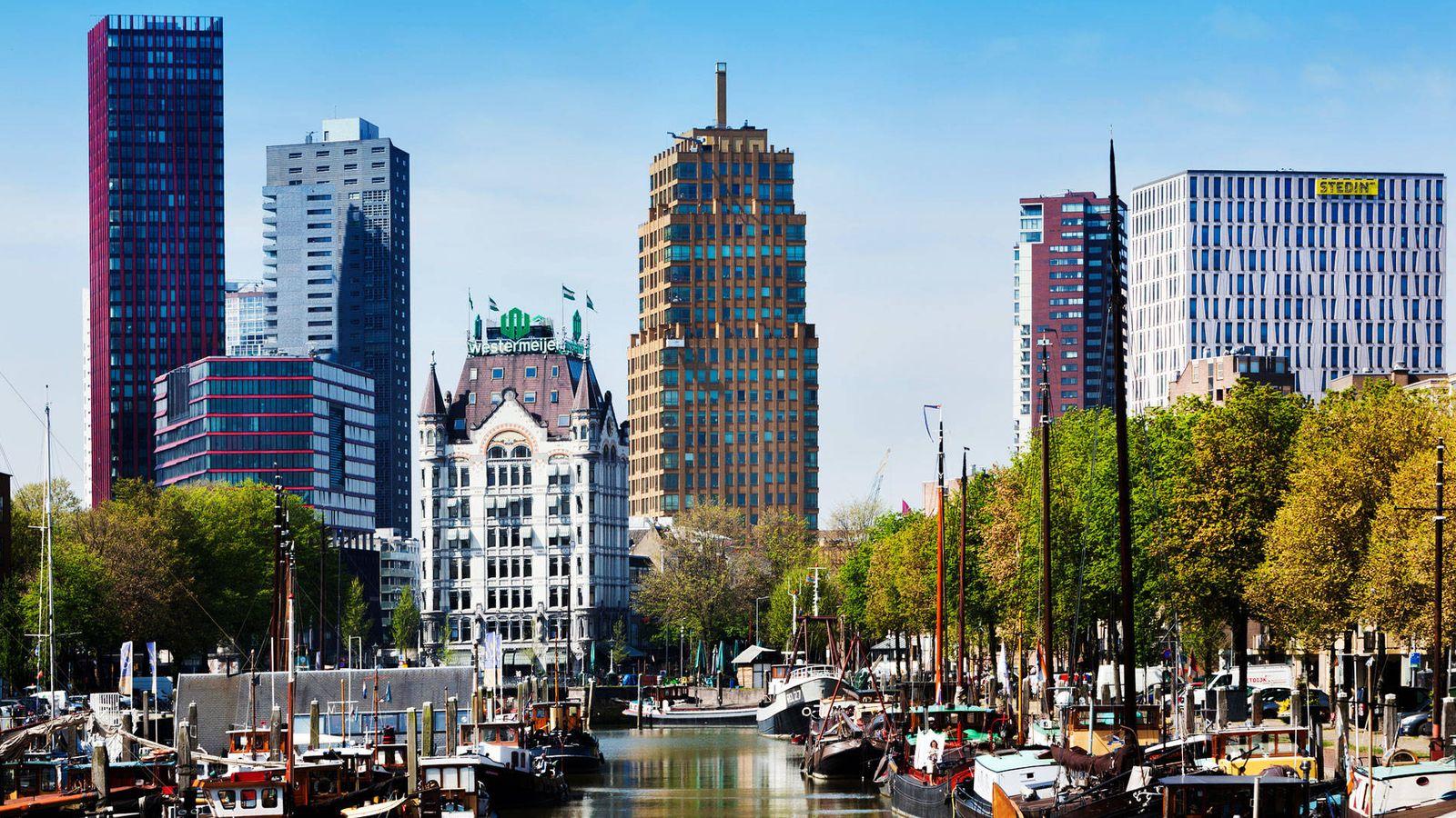Foto: Imagen del skyline de Rotterdam. (iStock)