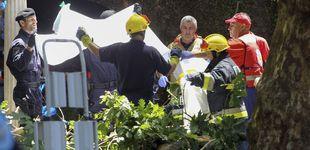 Post de Al menos 13 muertos en Madeira por la caída de un árbol