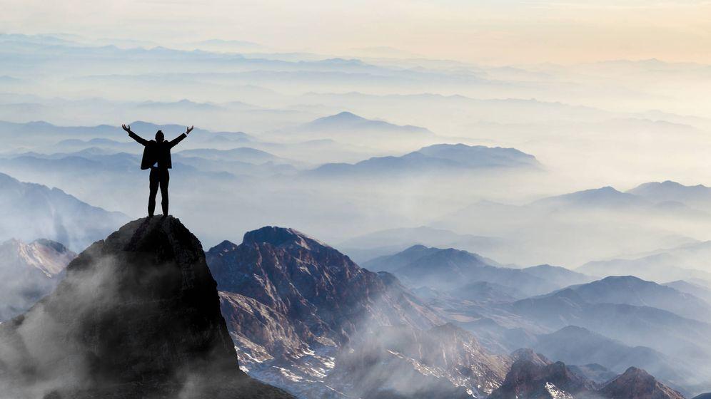 Foto: ¿Cómo se habrá subido ahí arriba? (iStock)