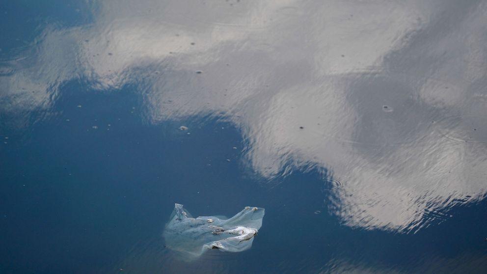 Las bolsas de plástico, historia del aliado de las compras que arrasa con la vida marina