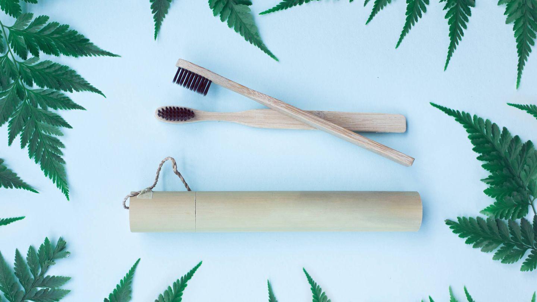 Cepillos de dientes de bambú. (IStock)