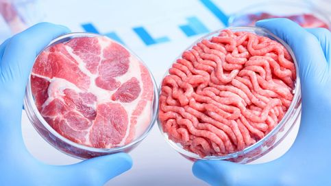 La carne de laboratorio que impedirá la trasmisión de enfermedades animales
