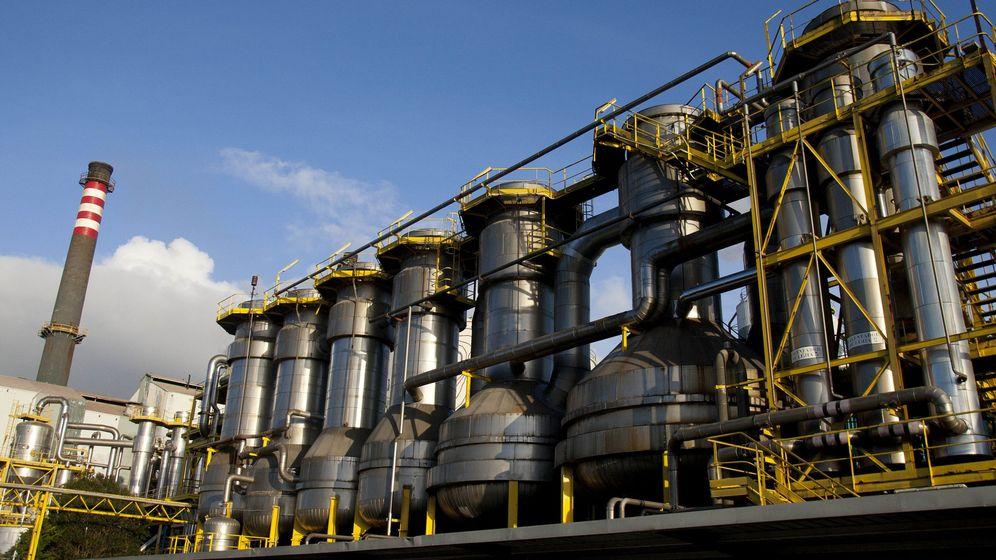 Foto: La planta de Ence en Pontevedra. (EFE)