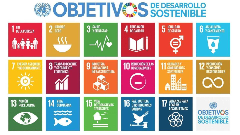 Los Objetivos de Desarrollo Sostenible de la ONU.