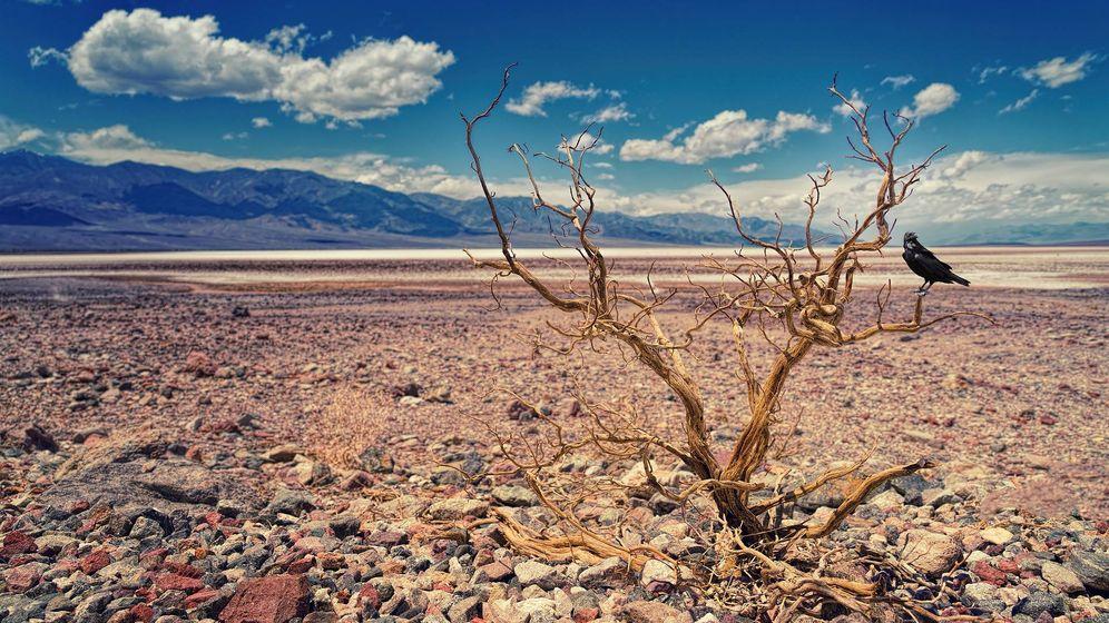 Foto: Una imagen del Valle de la Muerte (California, Estados Unidos). Foto: Pixabay.