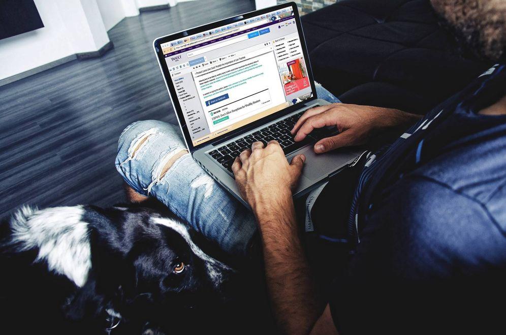 Foto: En internet se ofrecen desde cuentas de Twitter hasta perfiles de páginas de citas. (Pixabay)