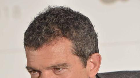 Antonio Banderas lamenta la muerte de su mascota, una parte de su familia