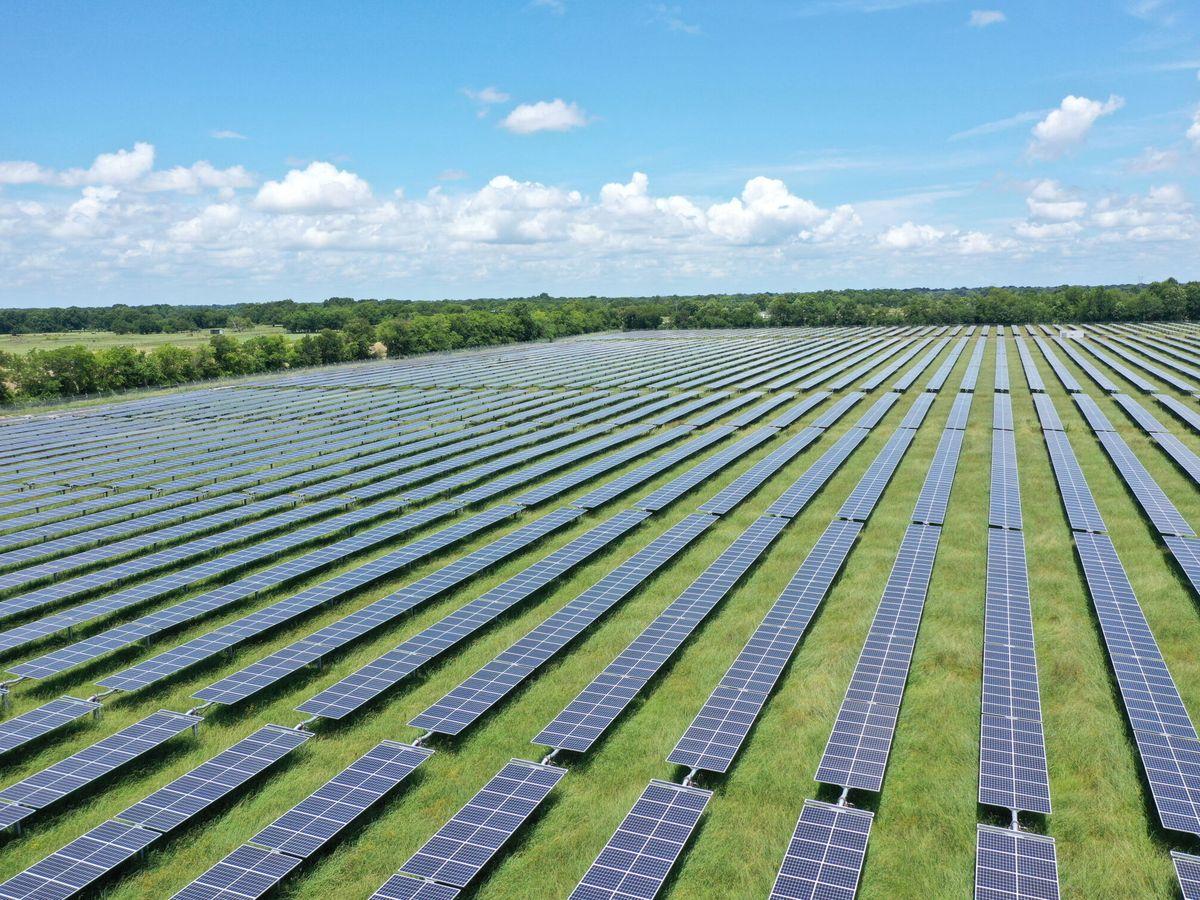 Foto: Paneles solares. (Reuters)