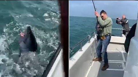 Un pescador captura un tiburón de 250 kilos