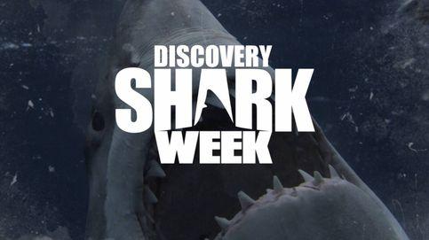 Discovery estrenará 19 documentales inéditos en su 'Shark Week'