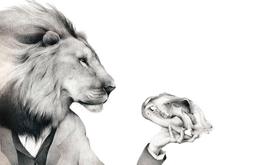 Foto: Ilustración para 'La selección natural', de Charles Darwin (Nórdica, 2016)