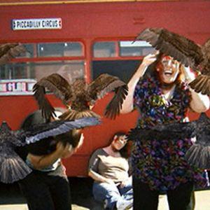 El remake cutre de 'Los Pájaros' se convierte en película de culto