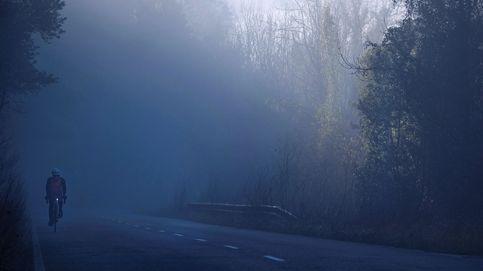 Un proyecto permitirá regar con niebla bosques canarios