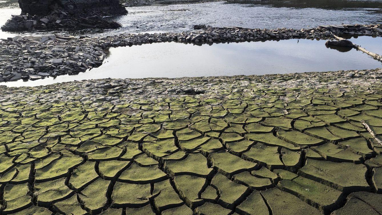 Foto: Imagen de archivo de tierra seca y cuarteada en el embalse de Belesar, a los pies del río Miño. (EFE)