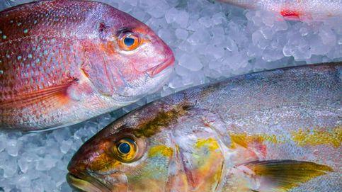 Fraude en el pescado: los trucos para que no te engañen al comprar