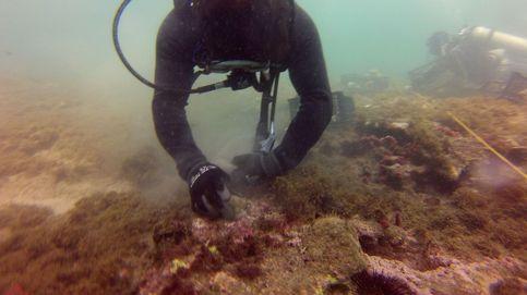 Salvad los arrecifes de Veracruz