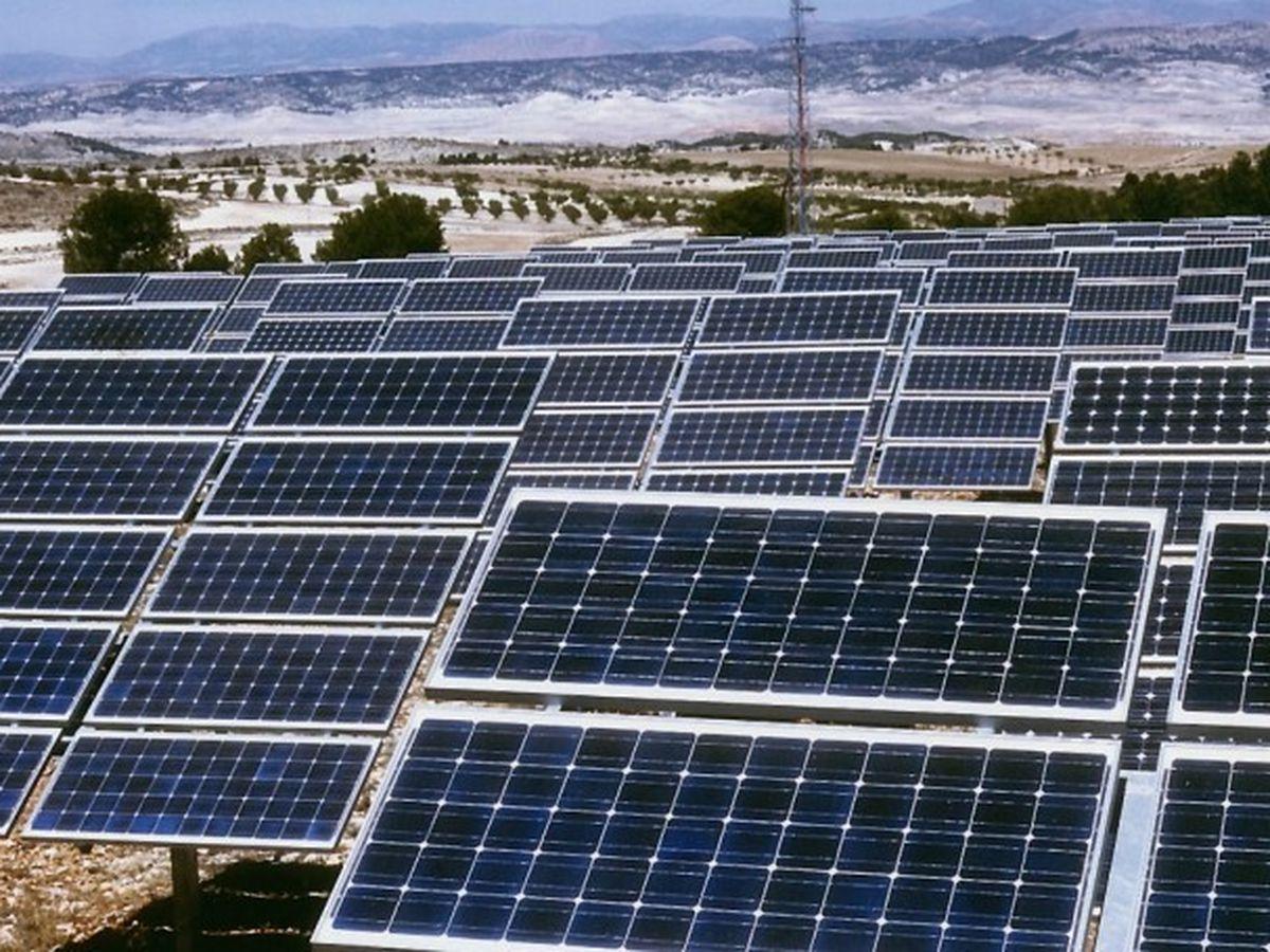 Foto: Huerto solar. (EFE)