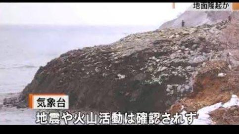 Crece de forma silenciosa e inesperada un trozo de tierra en Japón