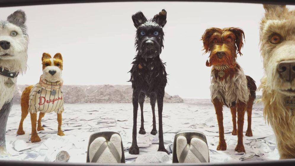 Foto: Un fotograma de 'Isla de perros'. (Fox)